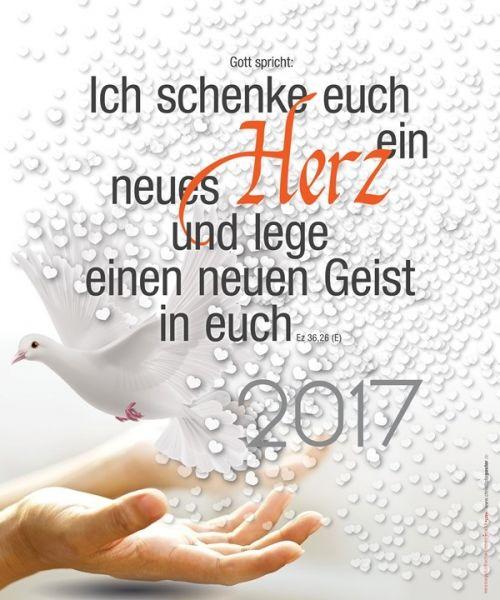 308-Jahreslosung 2017 - Taube