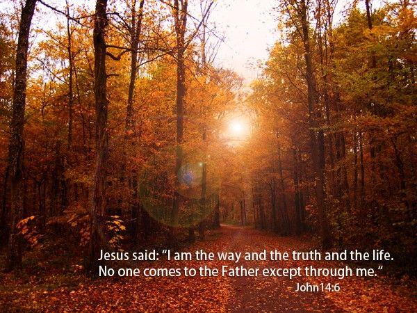 201-John 14:6