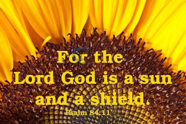 646 English Psalm
