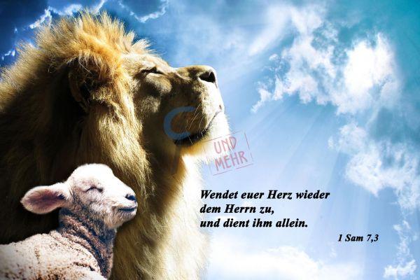 658 - Löwe und Lamm