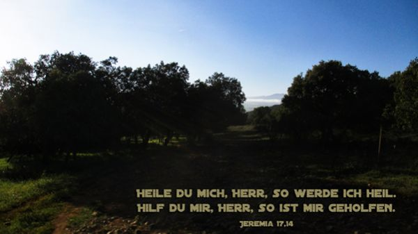 412 - Jeremia 17,14