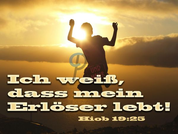 24-Hiob 19:25