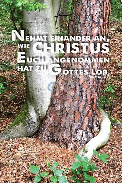 219-Jahreslosung 2015 - Bäume