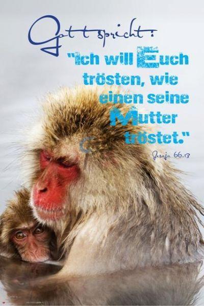 329-Jesaja 66