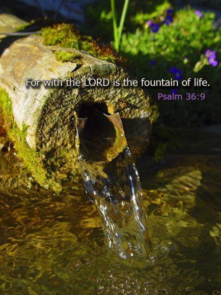 18.1 Psalm 36:6