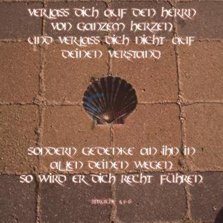 453 - Sprüche 3,5-6