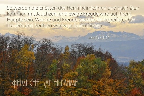 1001-Kondolenzkarte Set (Jesaja 51:11)