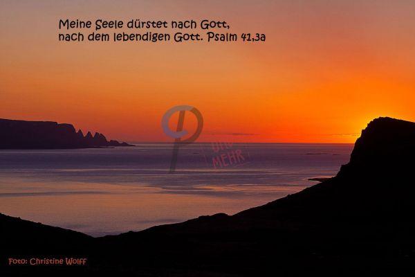 290 - Psalm 41