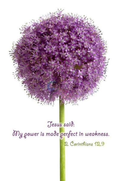 66-2. Corinthians 12:9