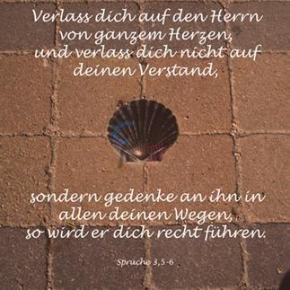 452 - Sprüche 3,5-6