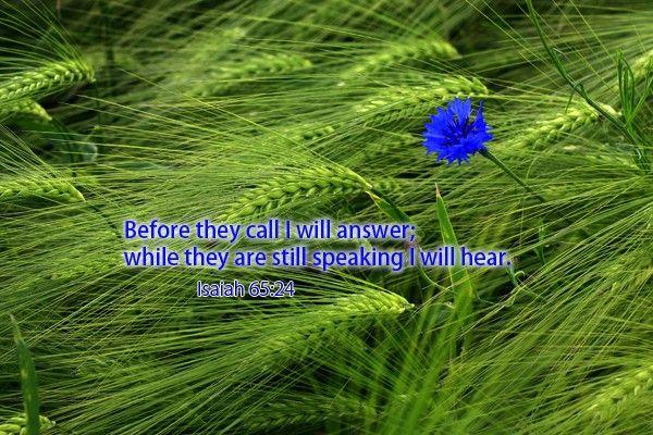 202-Isaiah 65:24