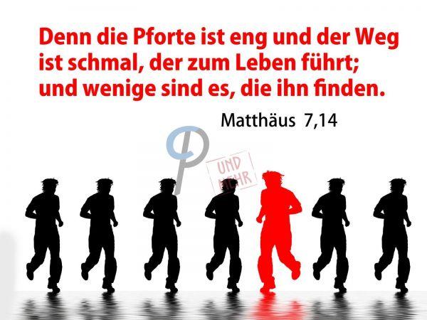 41-Matthäus 7:14