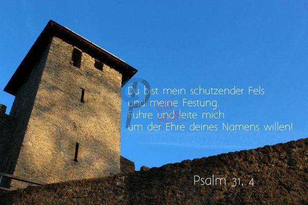 678 - Psalm 31,4 (Du bist mein....)