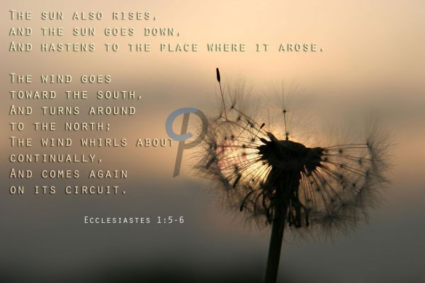 138.1-Ecclesiastes 1:5-6