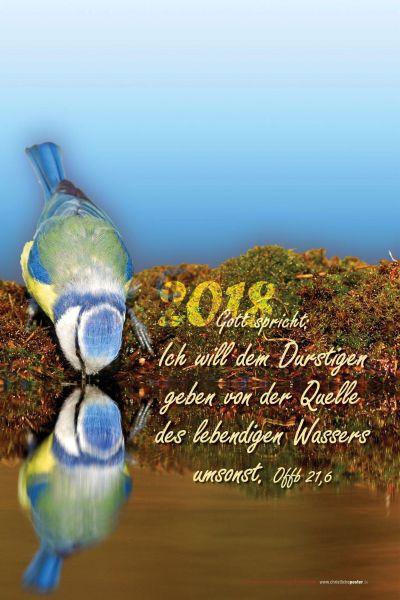 511.1 - Jahreslosung 2018 Vogel hoch (mit Jahreszahl)