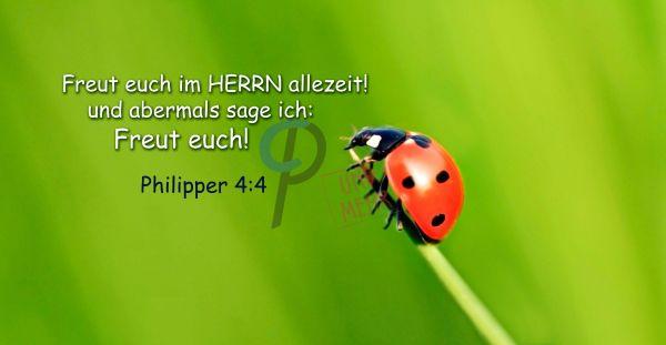 20-Philipper 4:4