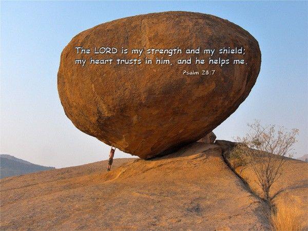 175-Psalm 28:7