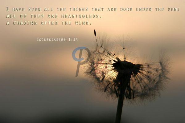 12.1-Ecclesiastes 1:14