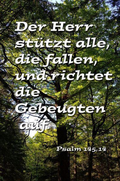 673 - Der Herr stützt...