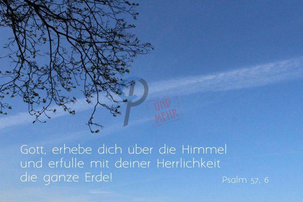 689 - Psalm 57,6