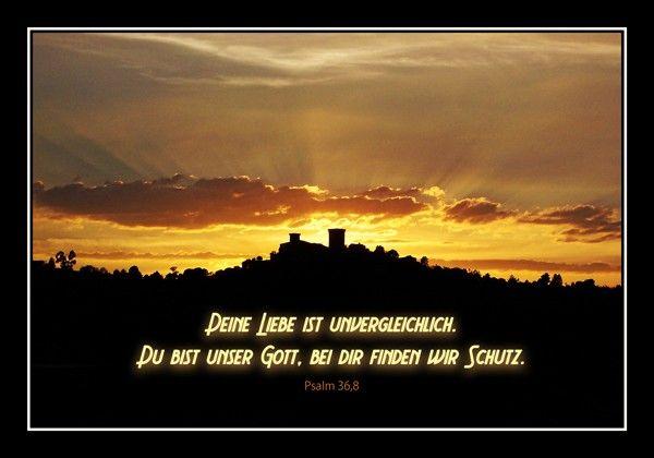 128-Psalm 36:8
