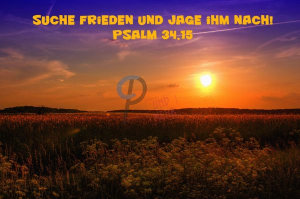 567 Jahreslosung 2019 Sonnenuntergang Feld