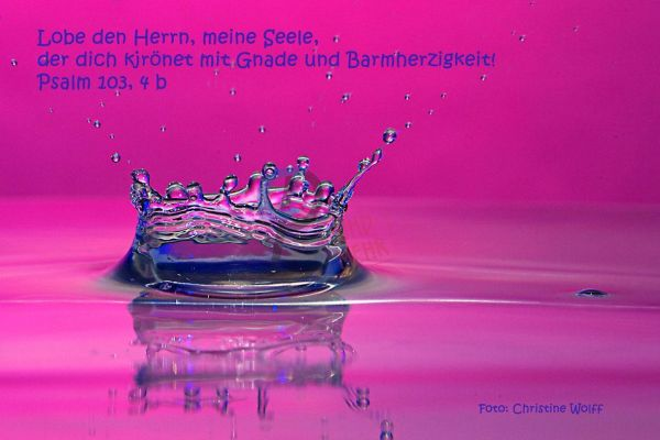 295 - Psalm 103