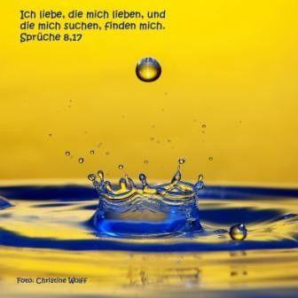 294 - Sprüche 8